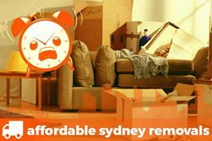 last minute removals boxes couch and furniture removalist ready