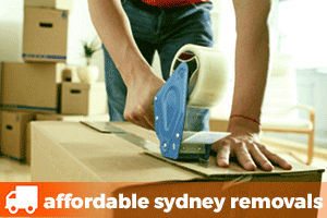 sealing a removalist box with a tape gun before the removalist arrives