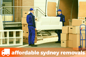 two removalists loading a truck with a lounge furniture and boxes